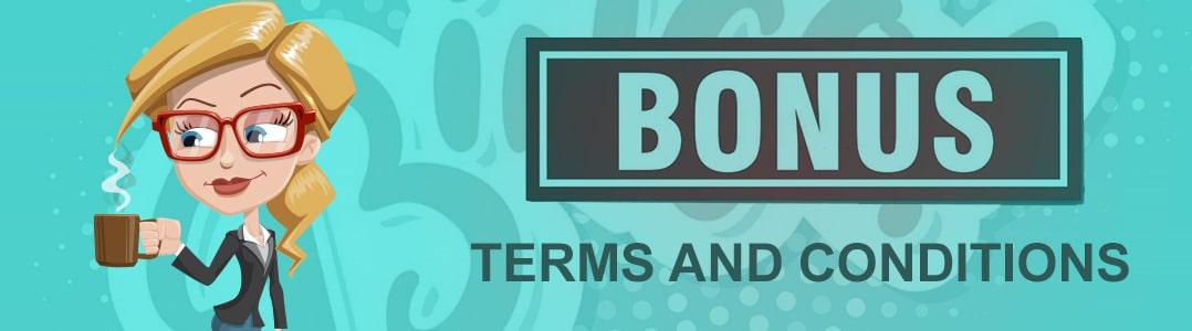 Bingo Bonus Terms and Conditions
